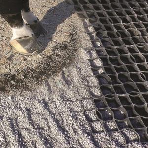 sacrifice-muddy-paddock-fix